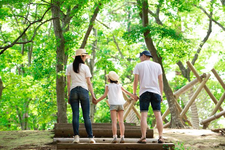 全家福與森林